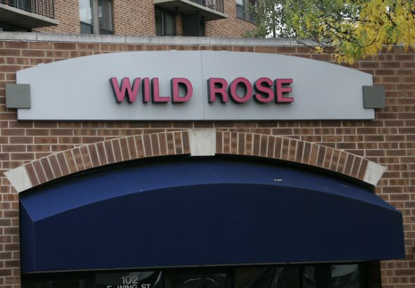 Wild Rose.  LED Channel letters on panel.